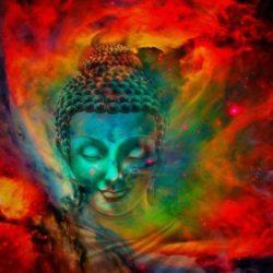 Legea Dharmei sau datoria individuala